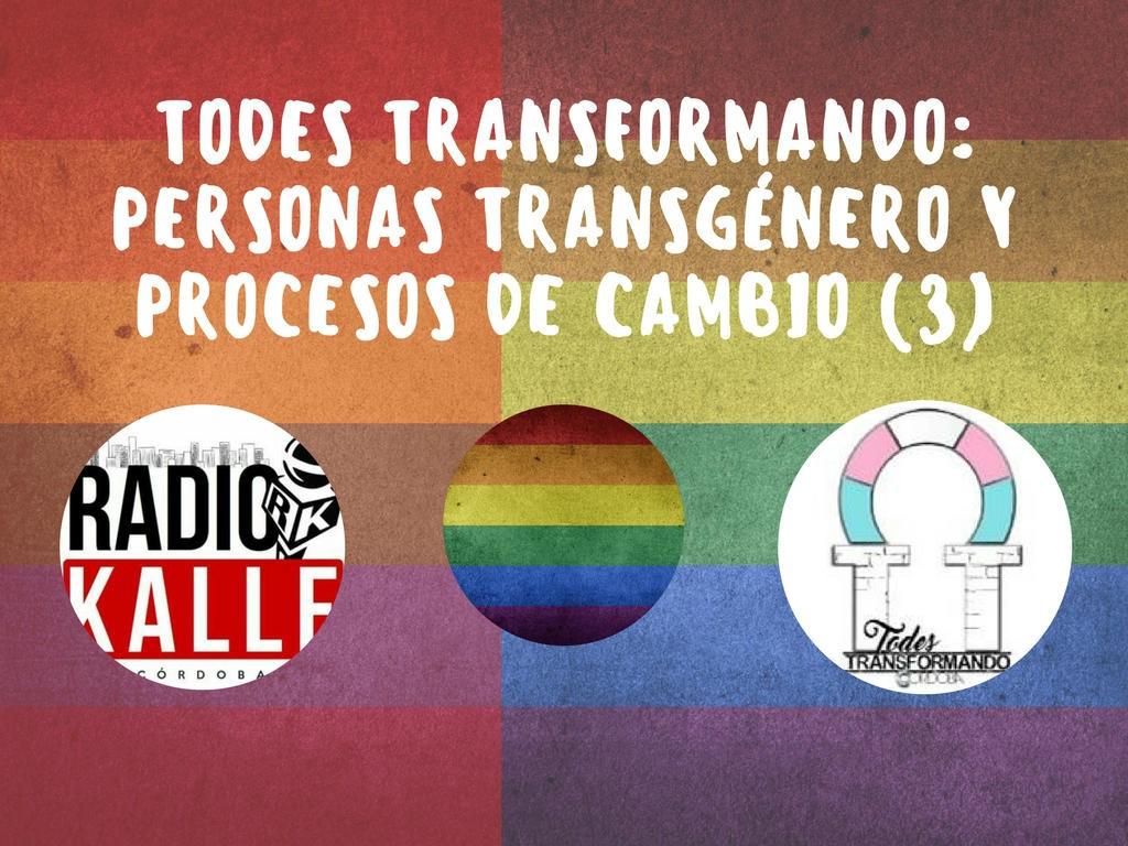 Todes Transformando: personas transgénero y procesos de cambio (3)