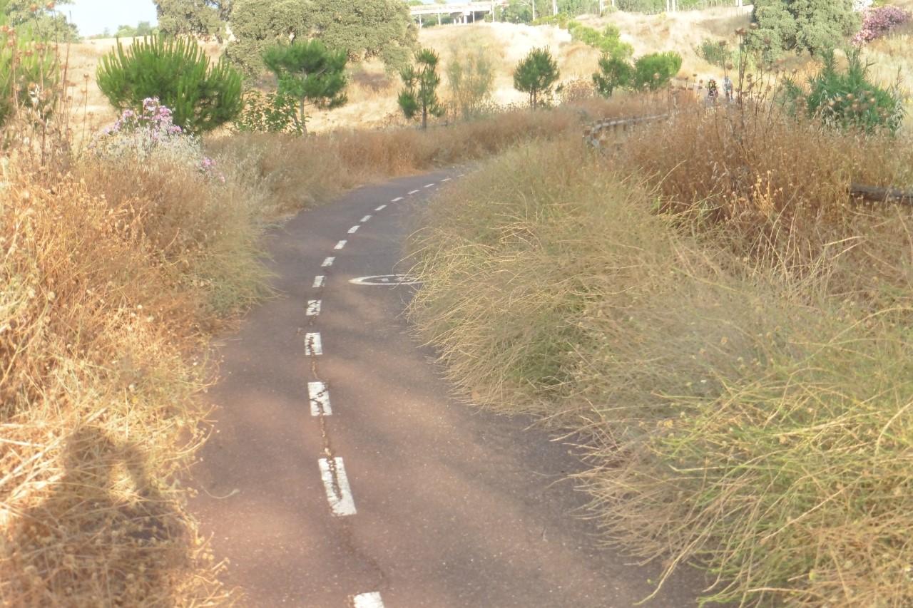 EQUO reclama el mantenimiento del carril bici a Rabanales