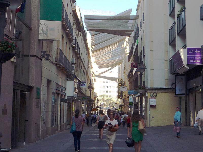 El Consejo del Movimiento Ciudadano demanda una regulación única del uso de la vía pública