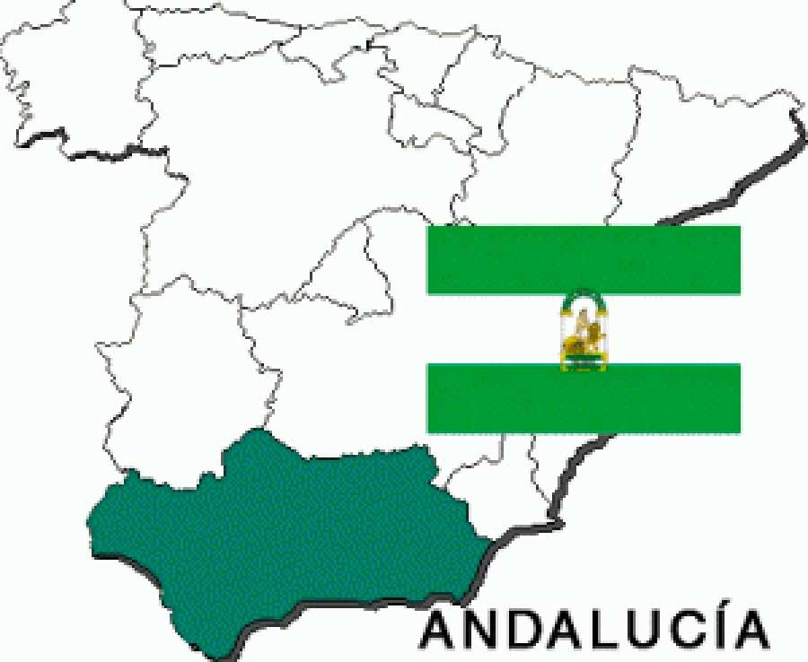 Principios y objetivos democráticos, sociales y medioambientales para Andalucía
