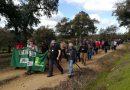 Colectivos Ecologistas y Podemos denuncian en el Parlamento Europeo la usurpación de caminos públicos en Andalucía