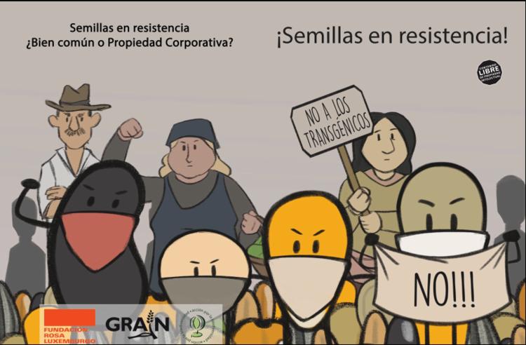 Semillas en Resistencia