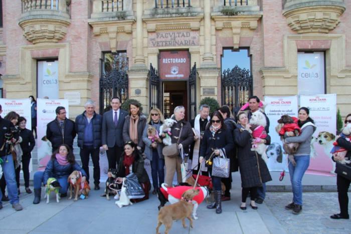 UNI Laica denuncia la superchería y el confesionalismo de la Facultad de Veterinaria de Córdoba con motivo de san Antón