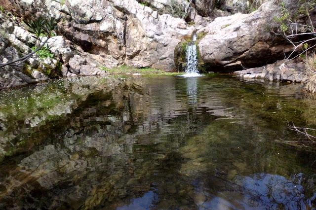 Unas jornadas pondrán en valor la riqueza medioambiental y la fauna de los ríos de Córdoba