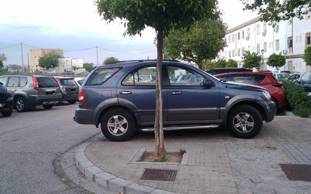 """El Campo de la Verdad """"no va a consentir"""" que la grúa se lleve en Feria """"ni un coche"""" de un vecino"""