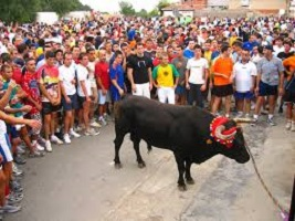 El ocaso de los festejos populares taurinos y la Tauromaquia