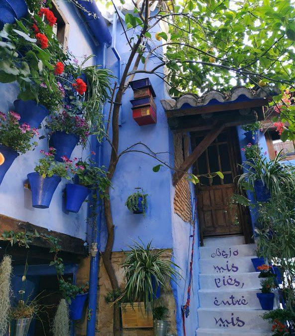 Primeros hoteles de insectos instalados en los patios de Córdoba