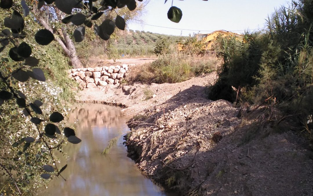 Maquinaria pesada destruye parte del cauce del río Salado en el término de Luque