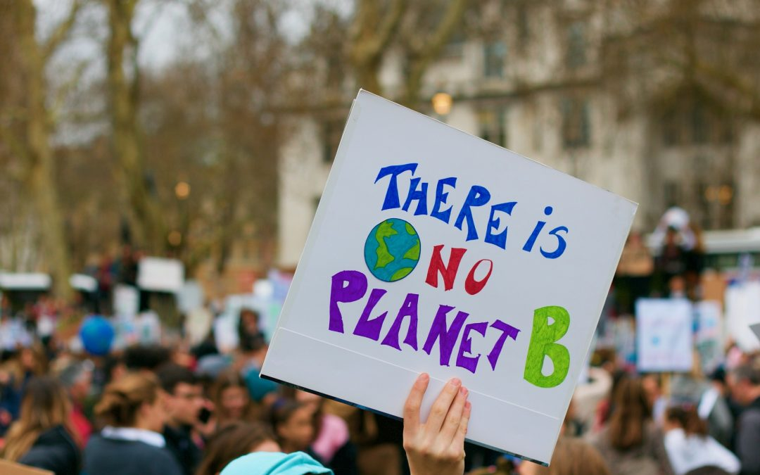 El mundo está en llamas del Amazonas al Círculo Polar Ártico. Ecología de la libertad y emergencia climática