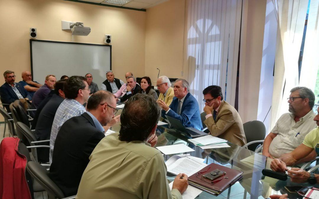 Ayuntamiento, Junta de Andalucía y Movimiento Ciudadano acordarán medidas para facilitar suministros básicos en las parcelaciones