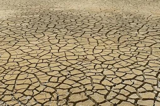 Termina la COP25 con la movilización social como única reseña positiva