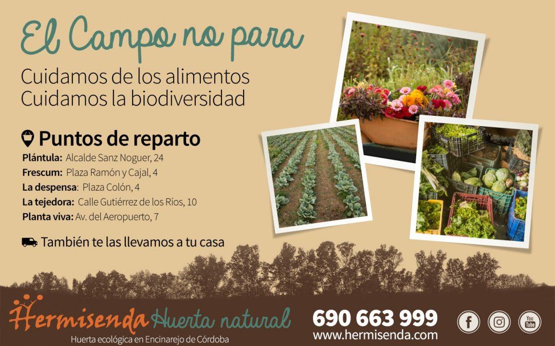 Hermisenda Huerta Natural te lleva productos ecológicos a casa