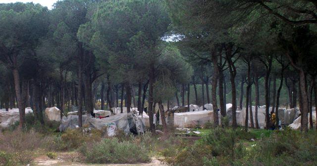 Los asentamientos de trabajadores inmigrantes de Huelva siguen sin el acceso al agua potable