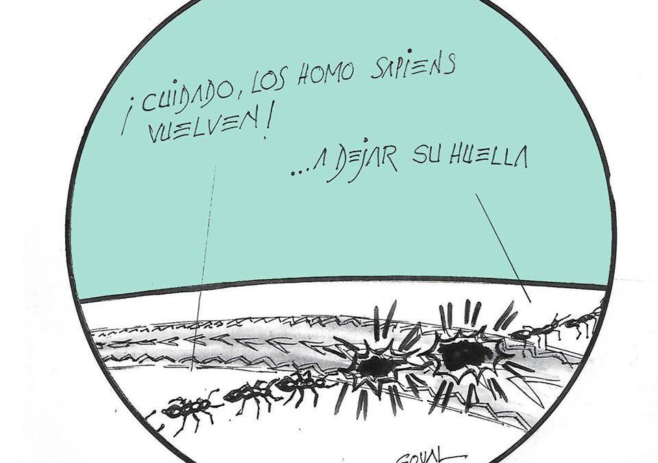 La viñeta de Goval: #DesescaladaResponsable