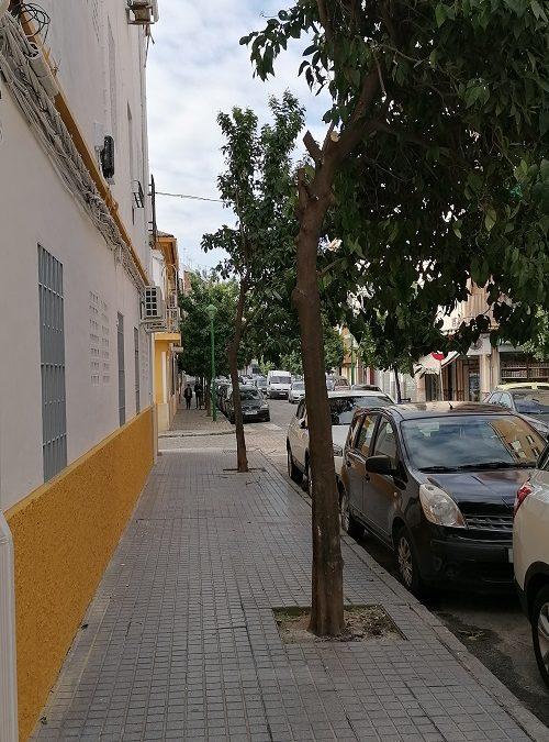 El Consejo del Movimiento Ciudadano exige que infraestructuras cumpla el reglamento de Participación.