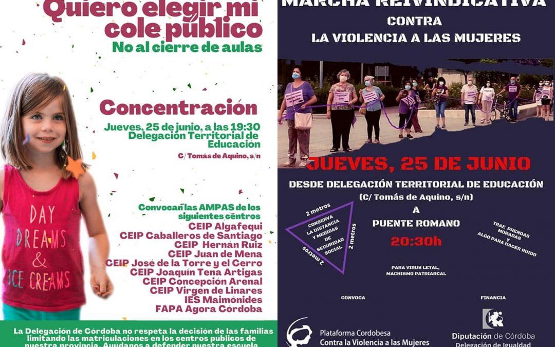 El Consejo del Movimiento Ciudadano en contra de la eliminación de unidades en colegios públicos