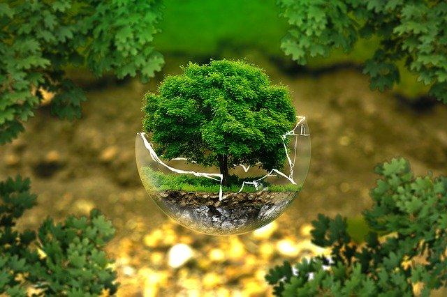 Ecologistas en acción concede los premios Atila 2020.