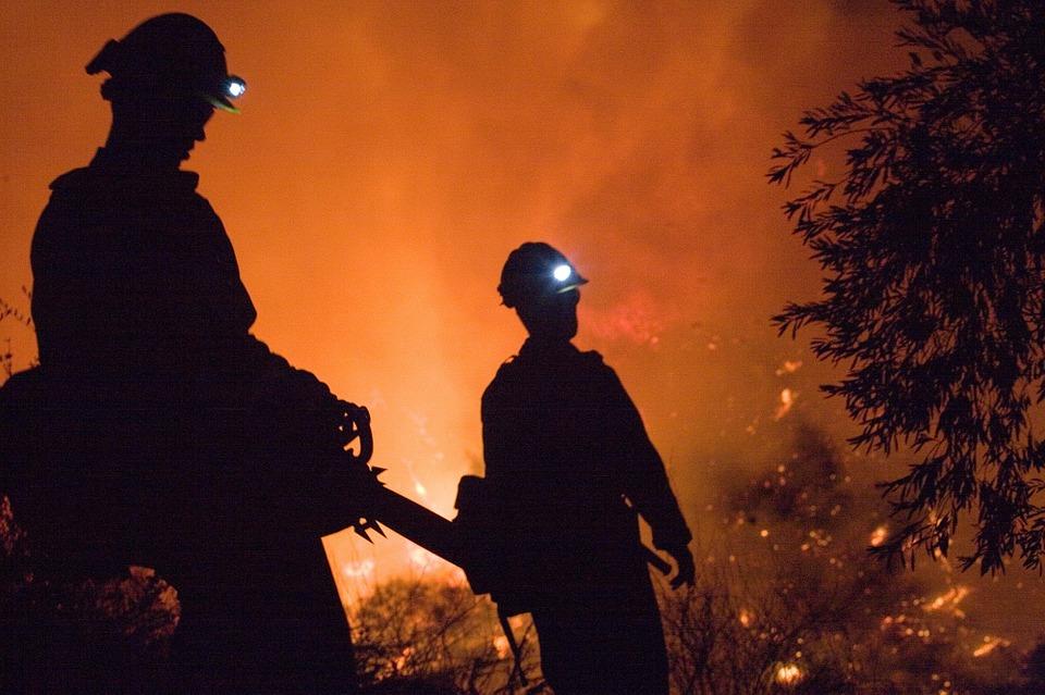 El Movimiento Ciudadano exige máximo rigor en la prevención de incendios forestales