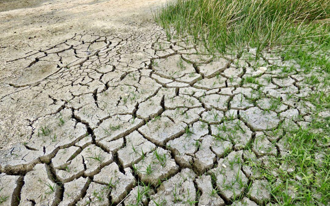 El Cambio Climático ya está aquí