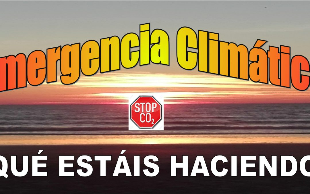 La Plataforma Rebelión por el Clima Córdoba estará presente en el pleno del Ayuntamiento del jueves día 17