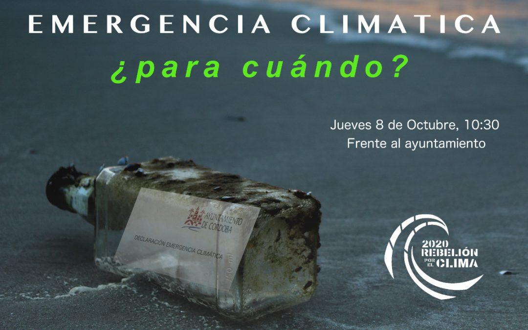 Rebelión por el Clima reivindicará en el pleno del jueves las medidas prometidas por el Ayuntamiento