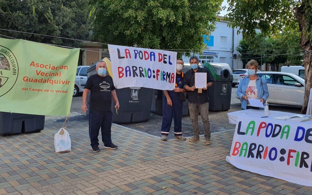La A.V. Guadalquivir se moviliza por una adecuada y urgente poda en el Campo de la Verdad