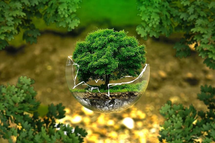 Organizaciones sociales,ecologistas y ciudadanas valoran negativamente los premios Andalucía Medio Ambiente 2020