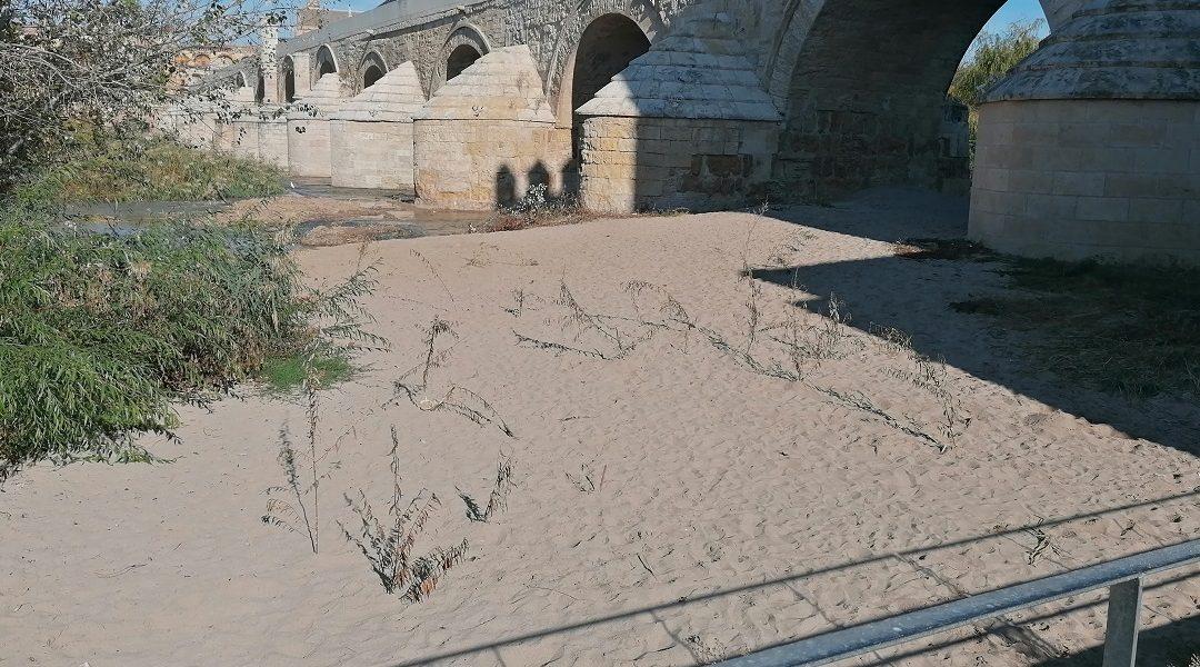 El Defensor del Pueblo de España admite a trámite una queja de la Plataforma por un Río Vivo.