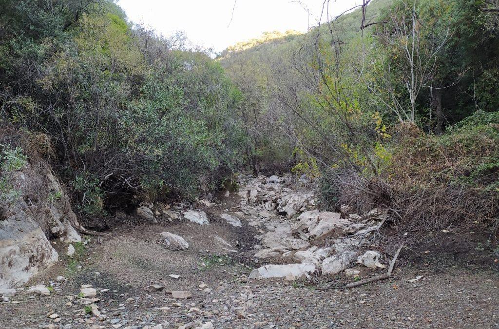 Respecto al estado del Río Guadalora