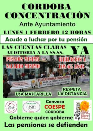 Éxito en todo el país de las movilizaciones de pensionistas el 25 de enero contra las conclusiones del Pacto de Toledo