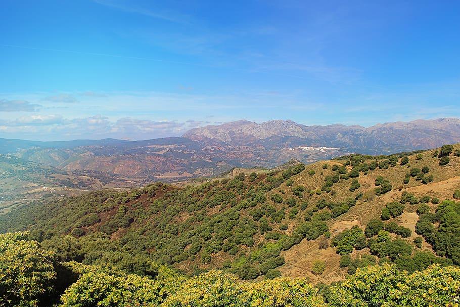 Ecologistas en Acción afirma que el día mundial de los bosques nos ha pillado en Andalucía con un Plan Forestal arrinconado