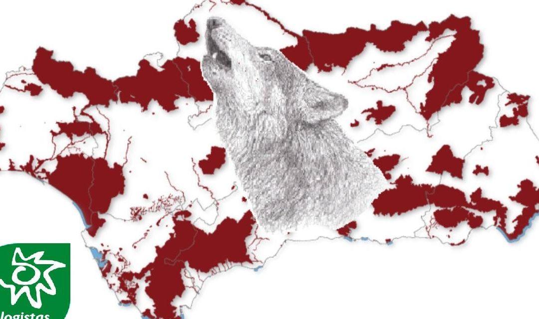 Ecologistas en Acción considera indignante que la Junta de Andalucía apueste por la extinción del lobo