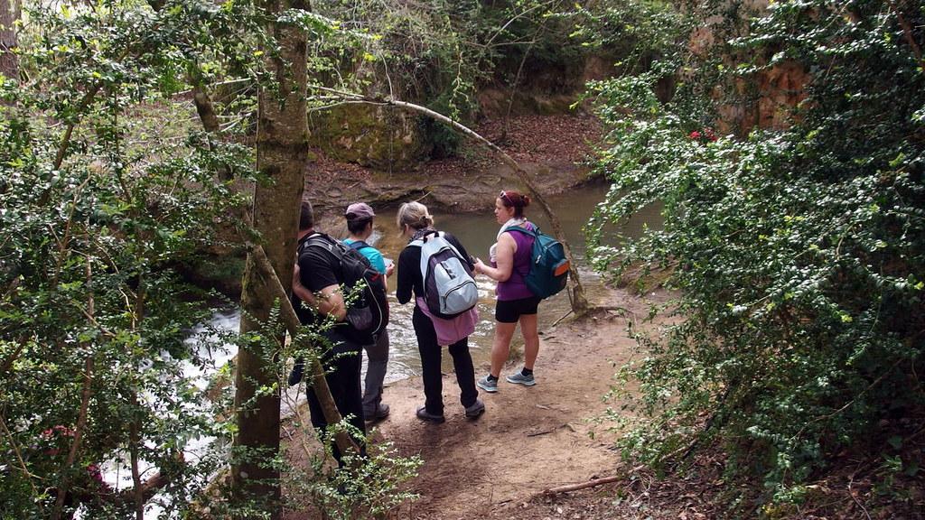 El Consejo del Movimiento Ciudadano urge más vigilancia en la Sierra
