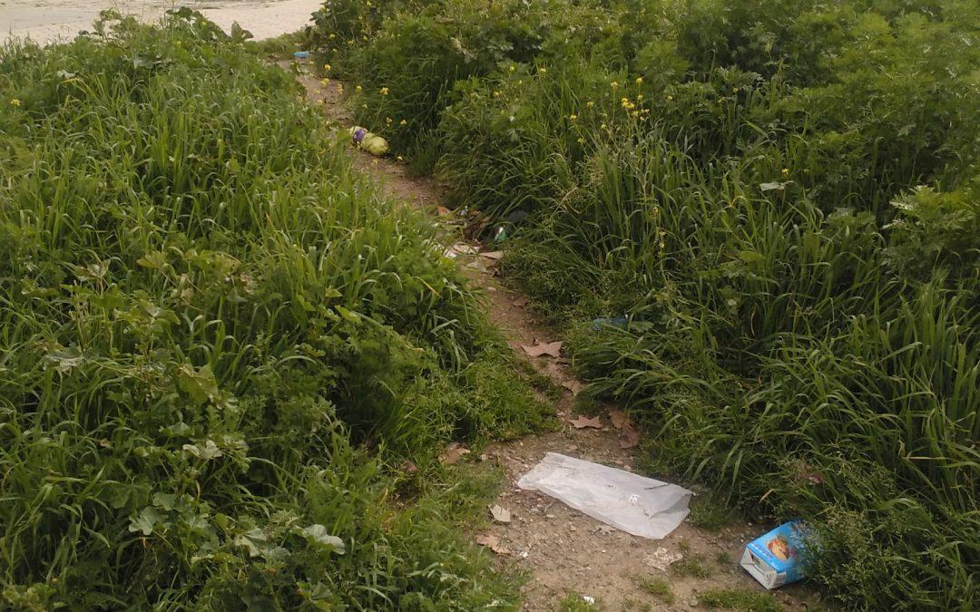 El Consejo de Distrito Sur denuncia la ineficacia de SADECO ante la suciedad de las calles