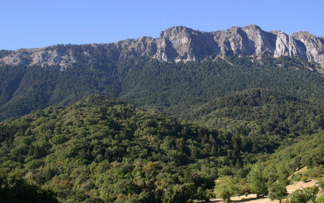 Ecologistas en Acción propone mayor participación social en la gestión de las Reservas de la Biosfera andaluzas